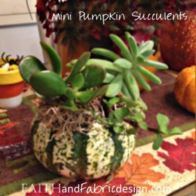 ACTIVITY: Succulent Mini Pumpkin Table Decoration