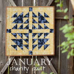 Charity Quilt 2017 January 2