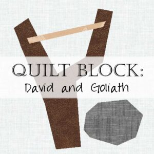 Day 15 David and Goliath Slingshot Quilt Block Scripture Sew