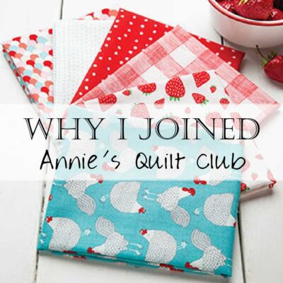 Annie's Quilt Club Subscription Box Review