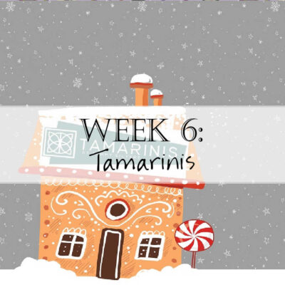 Holiday House Hop: Tamarinis